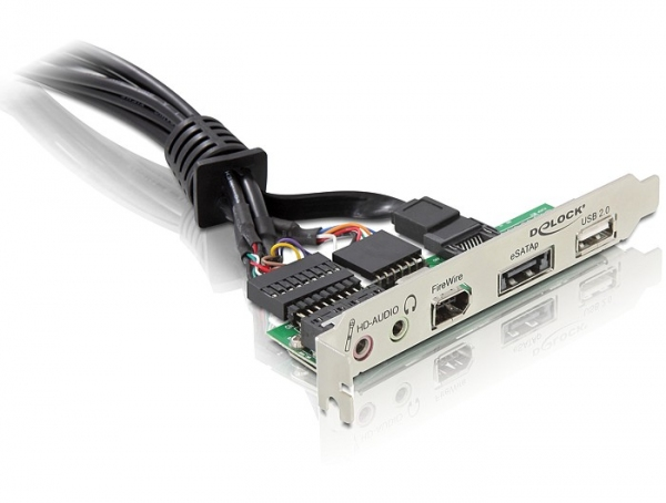 Delock Slotbracket eSATAp/USB 2.0/FireWire/HD-Audio